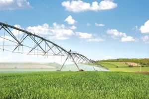 lateral-irrigation