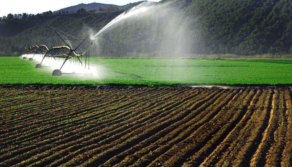 t-l-irrigation
