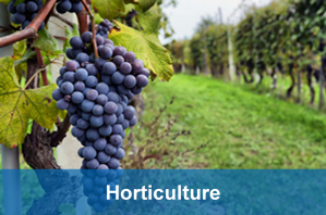 horticulture industry water dynamics